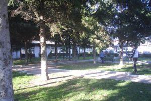 baraka kopshti